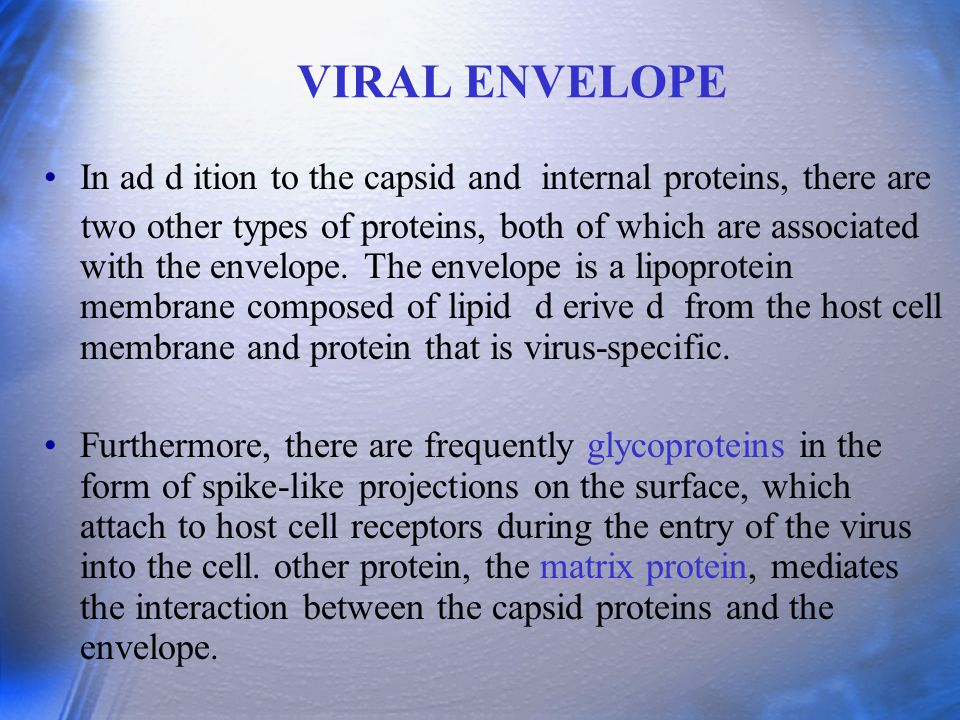 VIRAL ENVELOPE In ad d ition to the capsid and internal proteins, there are two other types of proteins, both of which are associated with the envelop
