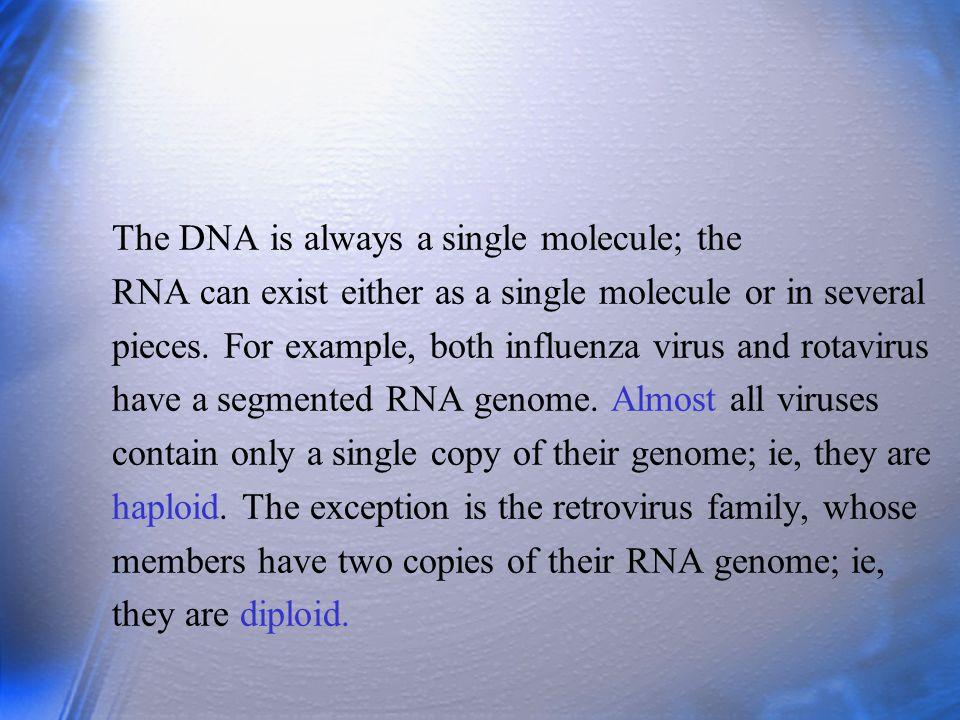 Examples of these include human immunodeficiency virus, herpes simplex virus type 2, and hepatitis B and C viruses.
