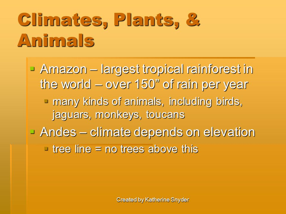 """Created by Katherine Snyder Climates, Plants, & Animals  Amazon – largest tropical rainforest in the world – over 150"""" of rain per year  many kinds"""