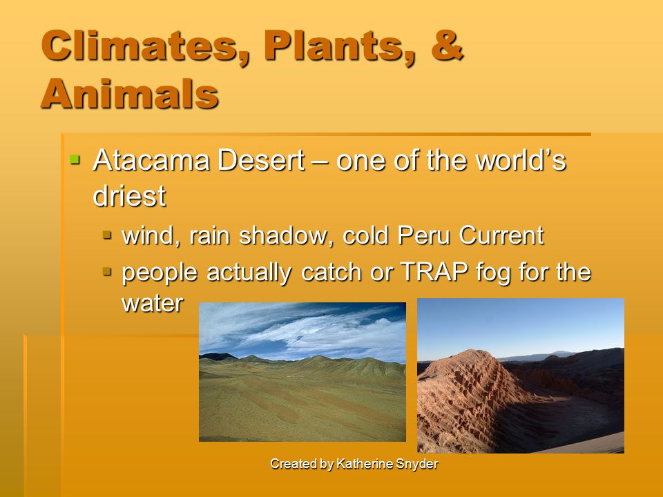 Created by Katherine Snyder Climates, Plants, & Animals  Atacama Desert – one of the world's driest  wind, rain shadow, cold Peru Current  people a