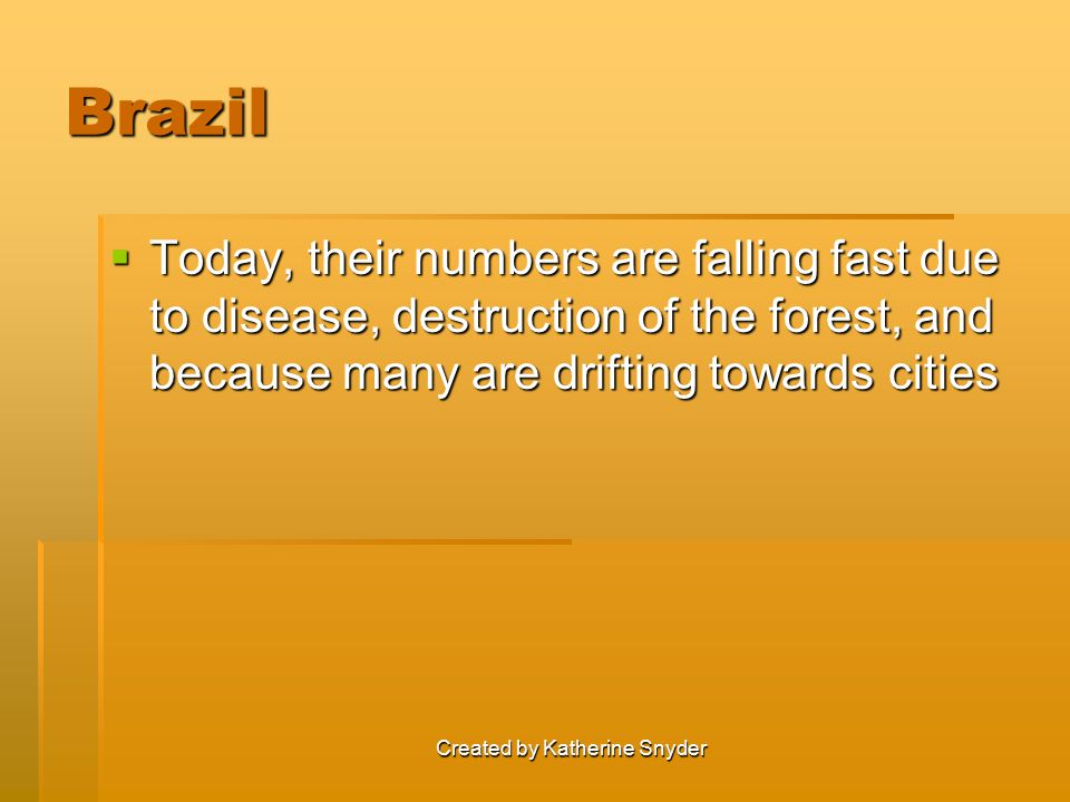 Created by Katherine Snyder Brazil  Today, their numbers are falling fast due to disease, destruction of the forest, and because many are drifting towards cities