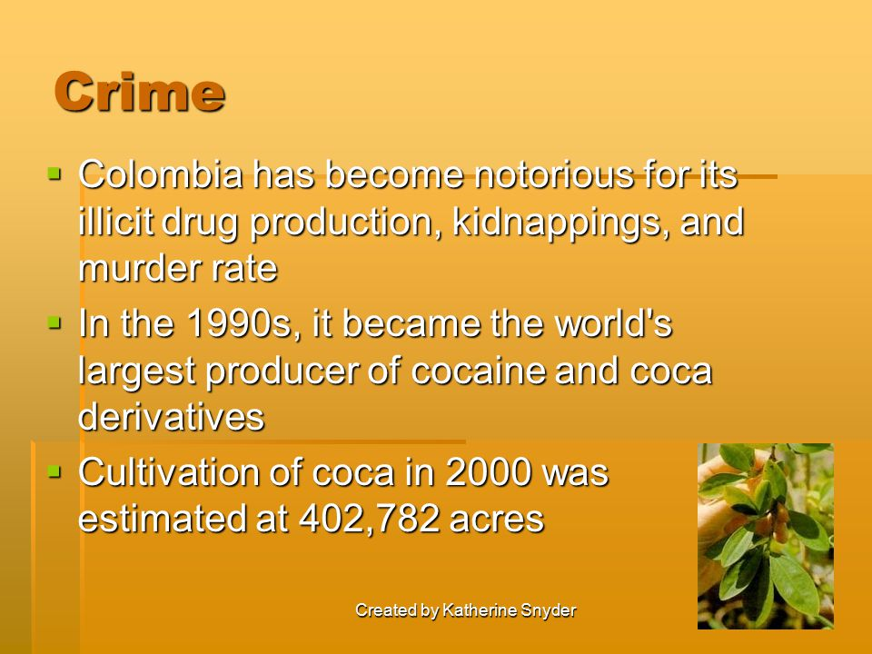 Crime  Colombia has become notorious for its illicit drug production, kidnappings, and murder rate  In the 1990s, it became the world s largest producer of cocaine and coca derivatives  Cultivation of coca in 2000 was estimated at 402,782 acres