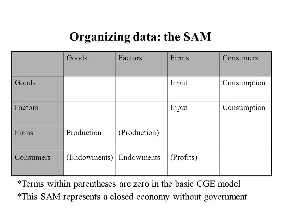Organizing data: the SAM GoodsFactorsFirmsConsumers GoodsInputConsumption FactorsInputConsumption FirmsProduction(Production) Consumers(Endowments)Endowments(Profits) *Terms within parentheses are zero in the basic CGE model *This SAM represents a closed economy without government