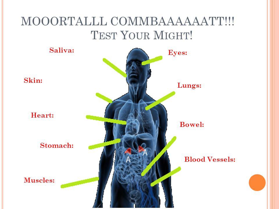 MOOORTALLL COMMBAAAAAATT!!. T EST Y OUR M IGHT .