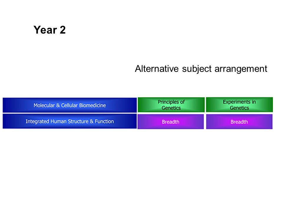 Year 2 Alternative subject arrangement