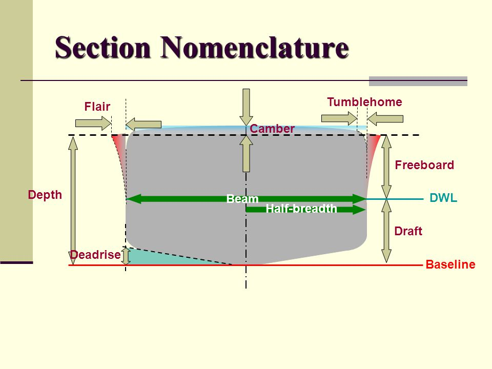 Section Nomenclature Baseline DWL Freeboard Draft Depth Deadrise Beam Half-breadth Camber Flair Tumblehome