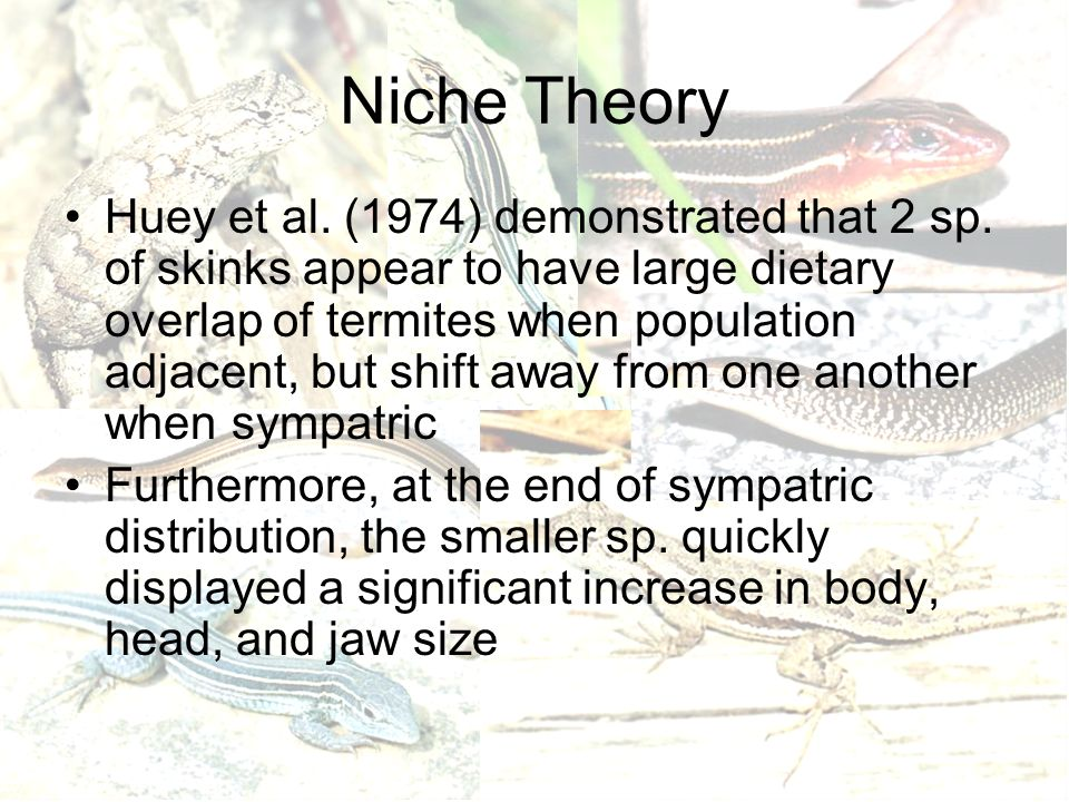 Niche Theory Huey et al. (1974) demonstrated that 2 sp.