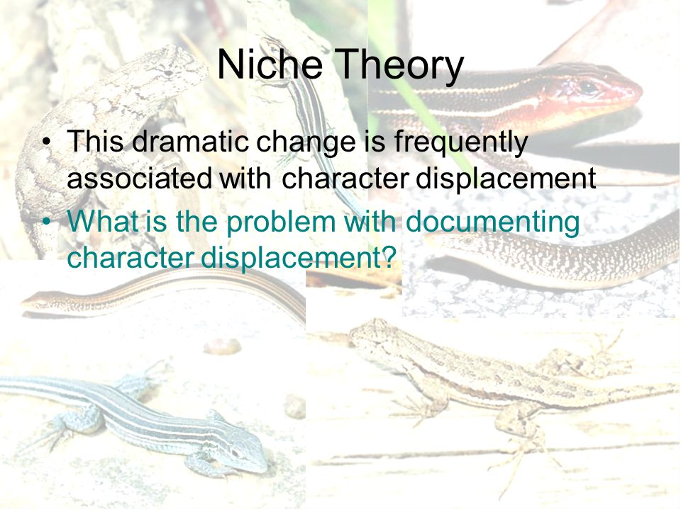 Niche Theory This dramatic change is frequently associated with character displacement What is the problem with documenting character displacement?