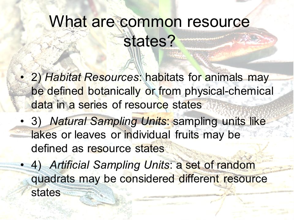 What are common resource states.
