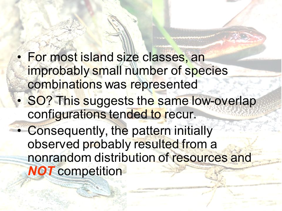 For most island size classes, an improbably small number of species combinations was represented SO? This suggests the same low-overlap configurations