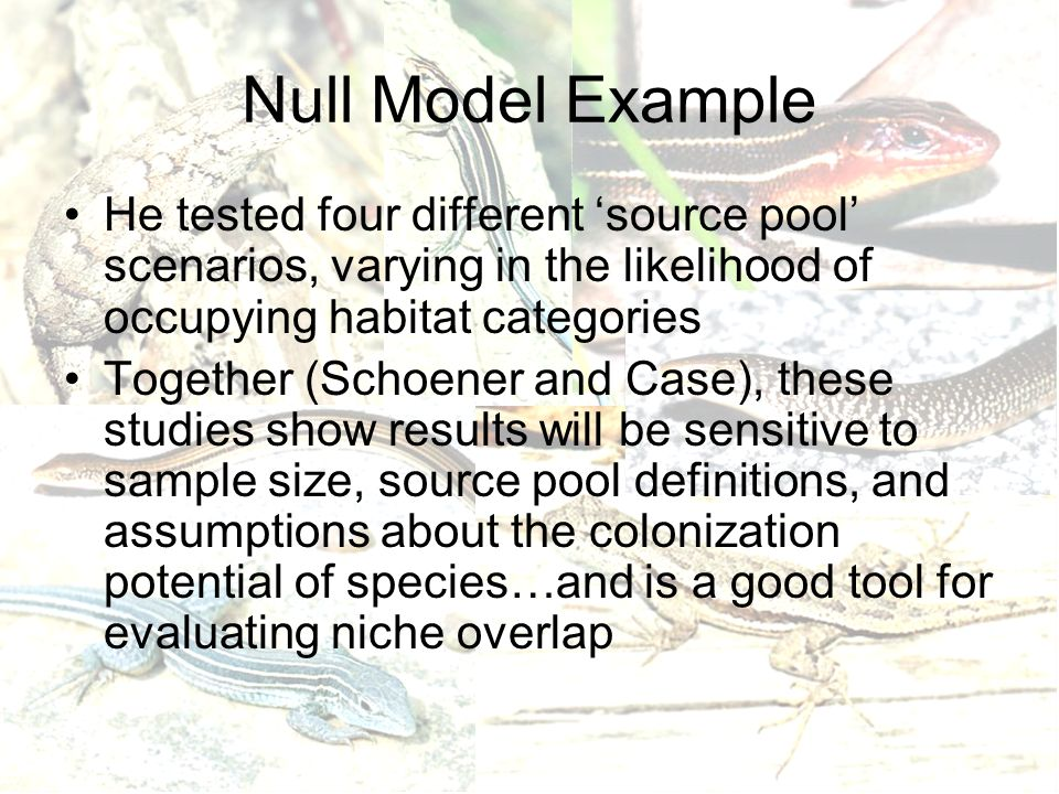 Null Model Example He tested four different 'source pool' scenarios, varying in the likelihood of occupying habitat categories Together (Schoener and Case), these studies show results will be sensitive to sample size, source pool definitions, and assumptions about the colonization potential of species…and is a good tool for evaluating niche overlap