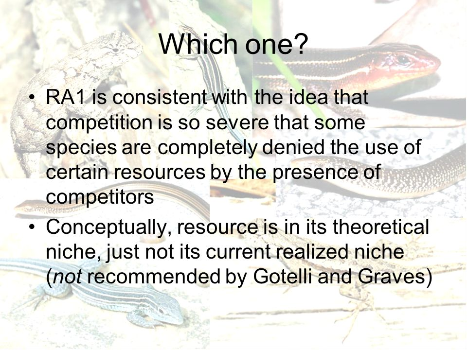 Which one? RA1 is consistent with the idea that competition is so severe that some species are completely denied the use of certain resources by the p