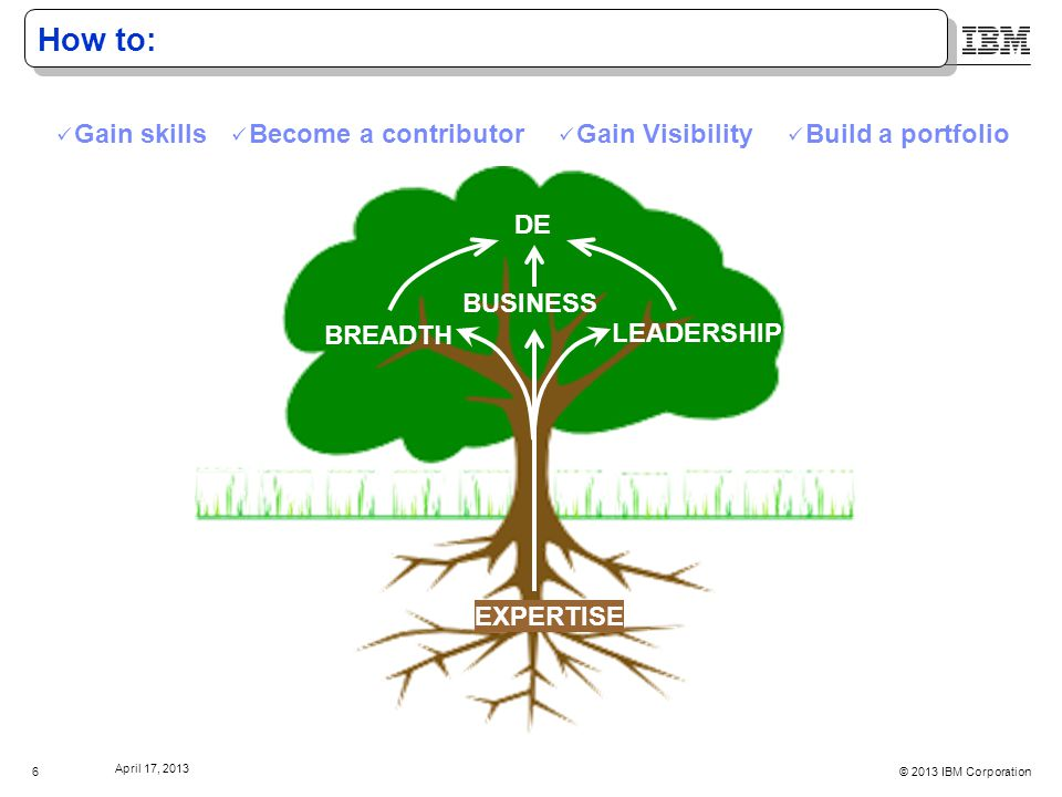 © 2013 IBM Corporation April 17, 2013 7 Thriving as a DE Continually expand and deepen expertise Breadth and leadership always growing A DE fills a business need BREADTH LEADERSHIP DE EXPERTISE BUSINESS