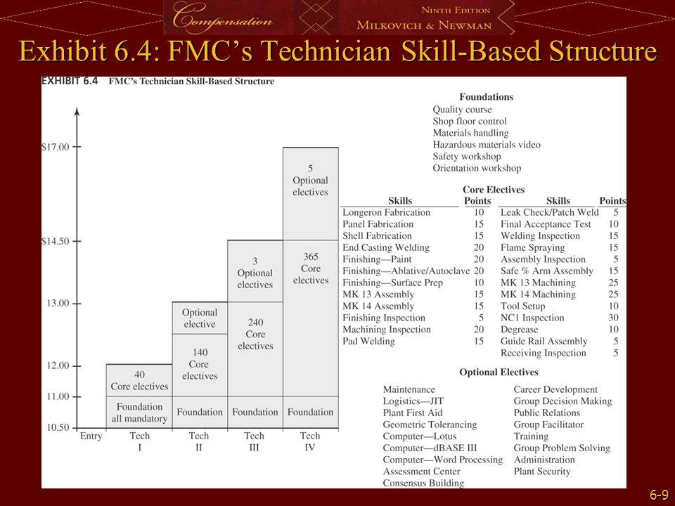 6-9 Exhibit 6.4: FMC's Technician Skill-Based Structure