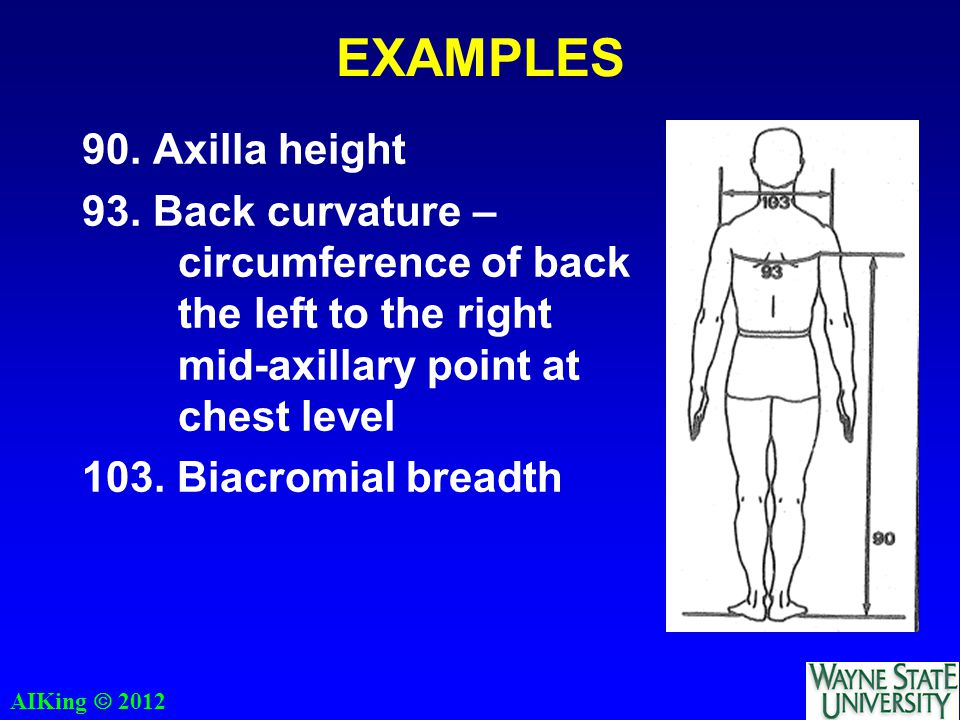 AIKing  2012 EXAMPLES 90. Axilla height 93.