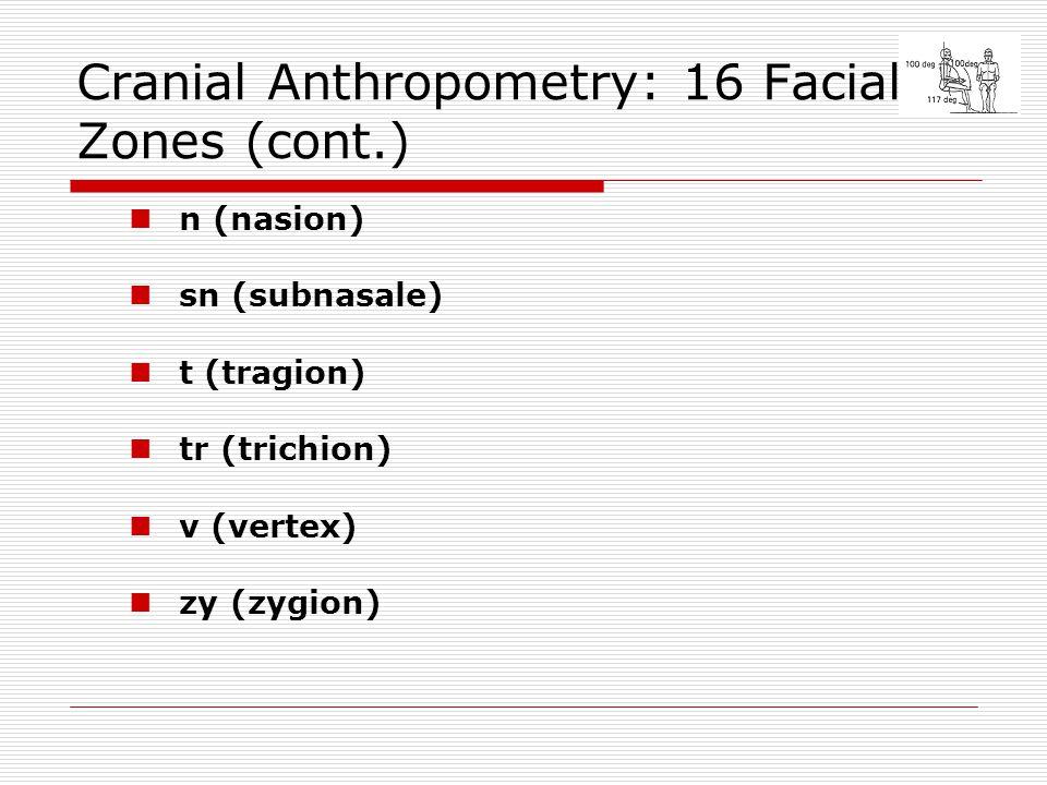 Cranial Anthropometry: 16 Facial Zones (cont.) n (nasion) sn (subnasale) t (tragion) tr (trichion) v (vertex) zy (zygion)