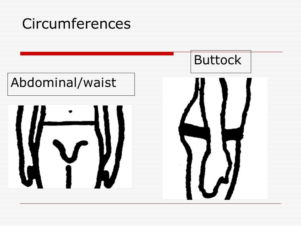 Circumferences Abdominal/waist Buttock