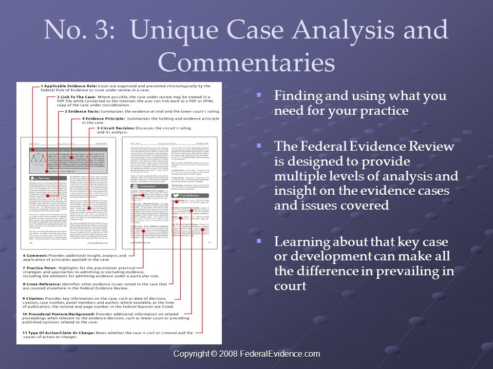 Copyright © 2008 FederalEvidence.com No. 3: Unique Case Analysis and Commentaries   Finding and using what you need for your practice   The Federa