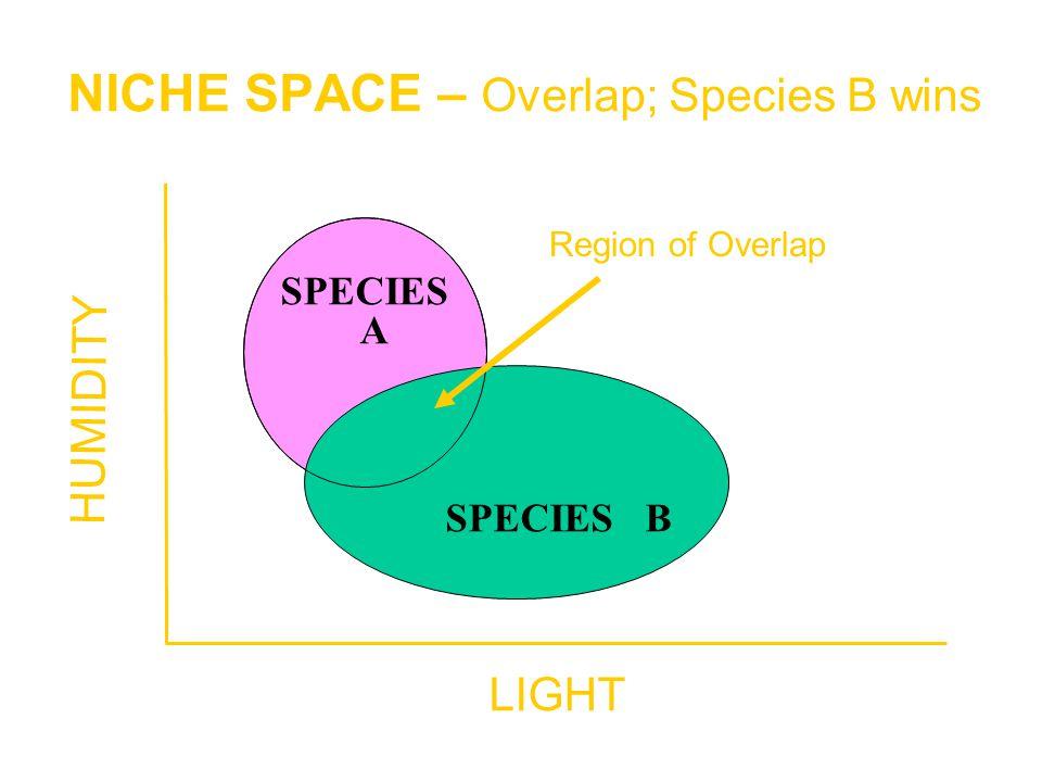 NICHE SPACE – Overlap; Species B wins SPECIES A SPECIES B LIGHT HUMIDITY Region of Overlap