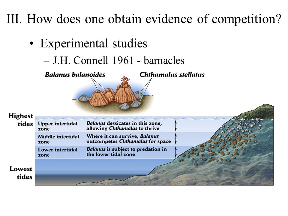 III.How does one obtain evidence of competition. Experimental studies –J.H.