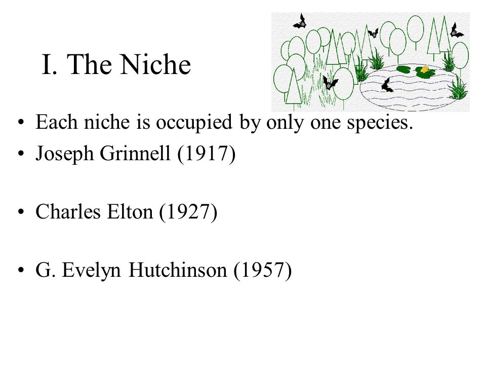 I.The Niche Each niche is occupied by only one species.