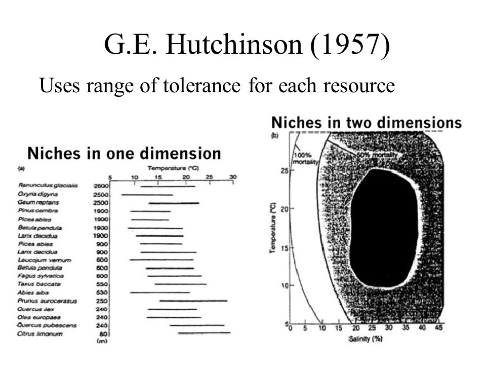 G.E. Hutchinson (1957) Uses range of tolerance for each resource
