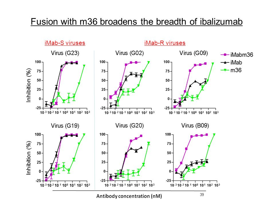 39 iMab-S viruses iMab-R viruses Fusion with m36 broadens the breadth of ibalizumab