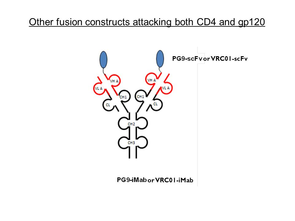 Other fusion constructs attacking both CD4 and gp120 or VRC01-scFv or VRC01-iMab