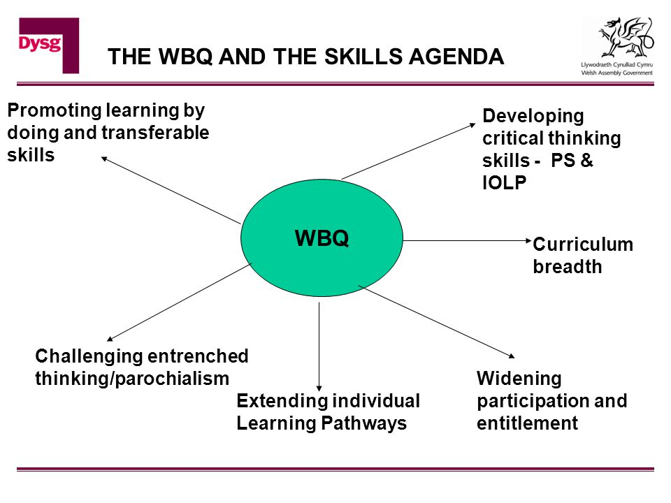 WBQ Widening participation and entitlement Challenging entrenched thinking/parochialism Promoting learning by doing and transferable skills Developing