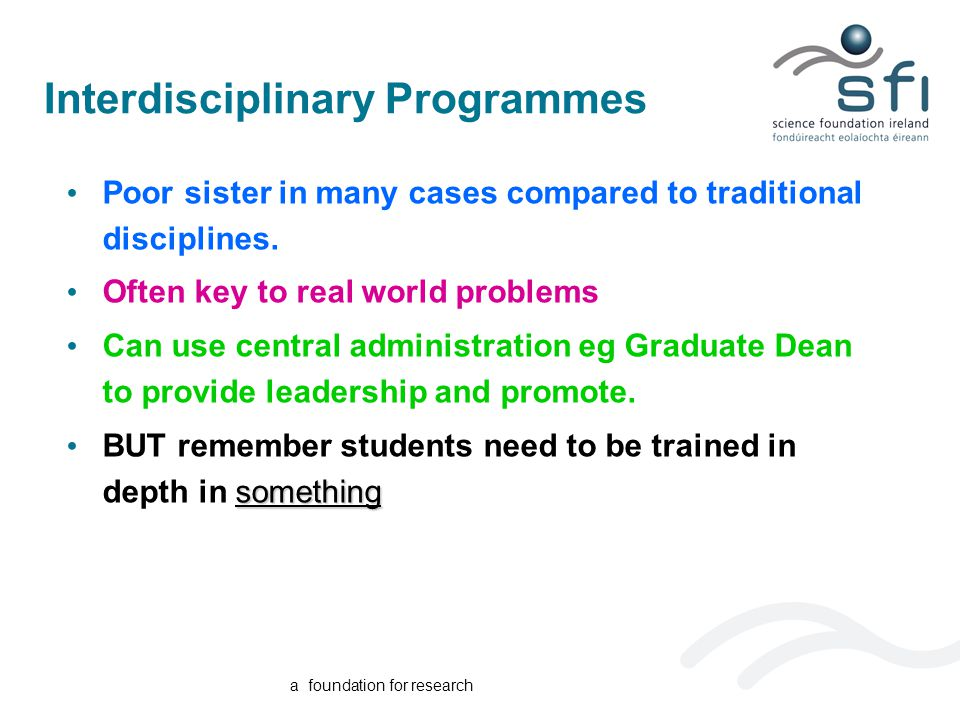 a foundation for research Interdisciplinary Programmes Poor sister in many cases compared to traditional disciplines.