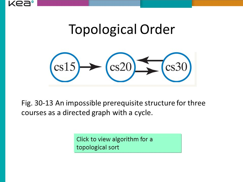 Topological Order Fig.