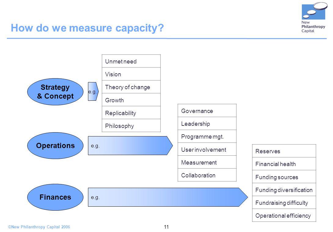 ©New Philanthropy Capital 2006 11 How do we measure capacity.