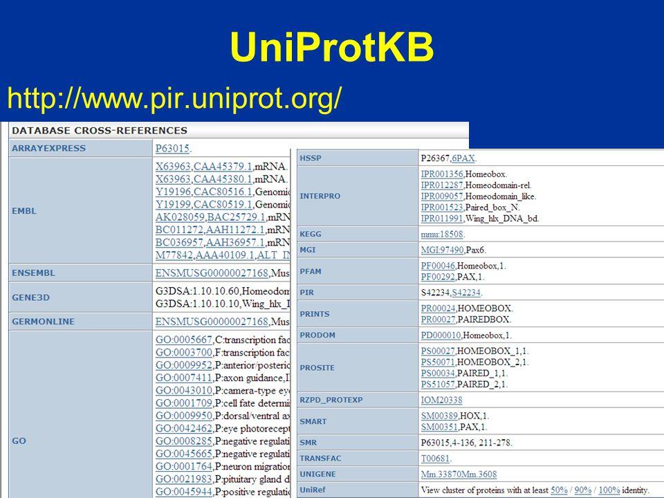 UniProtKB http://www.pir.uniprot.org/