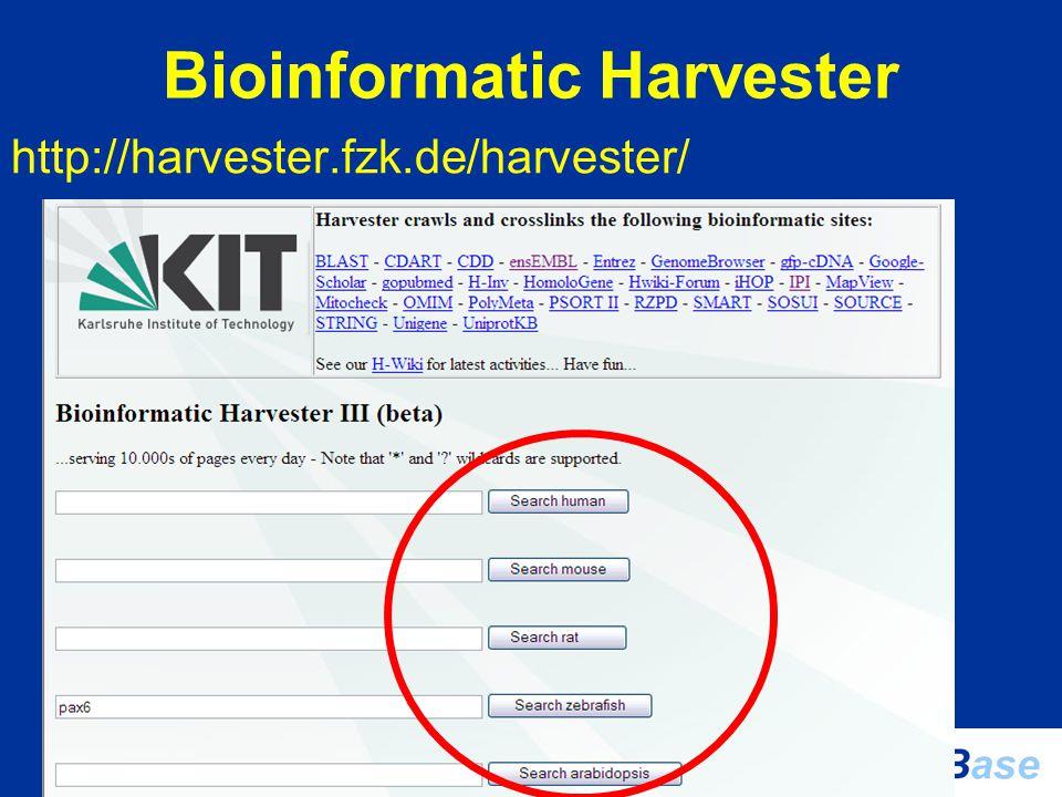 Bioinformatic Harvester http://harvester.fzk.de/harvester/