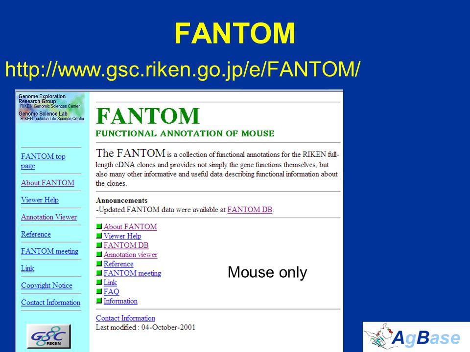 FANTOM http://www.gsc.riken.go.jp/e/FANTOM/ Mouse only