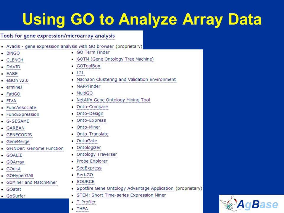 Using GO to Analyze Array Data