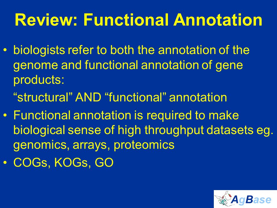 http://www.geneontology.org/GO.tools.shtml Other GO Annotation Tools