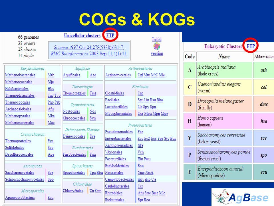 COGs & KOGs
