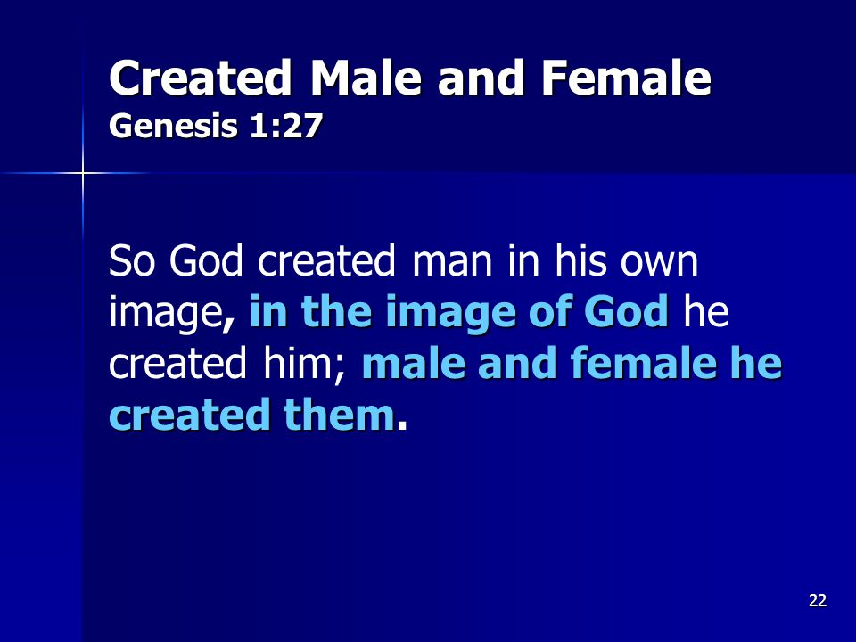 22 Created Male and Female Genesis 1:27 in the image of God male and female he created them So God created man in his own image, in the image of God he created him; male and female he created them.