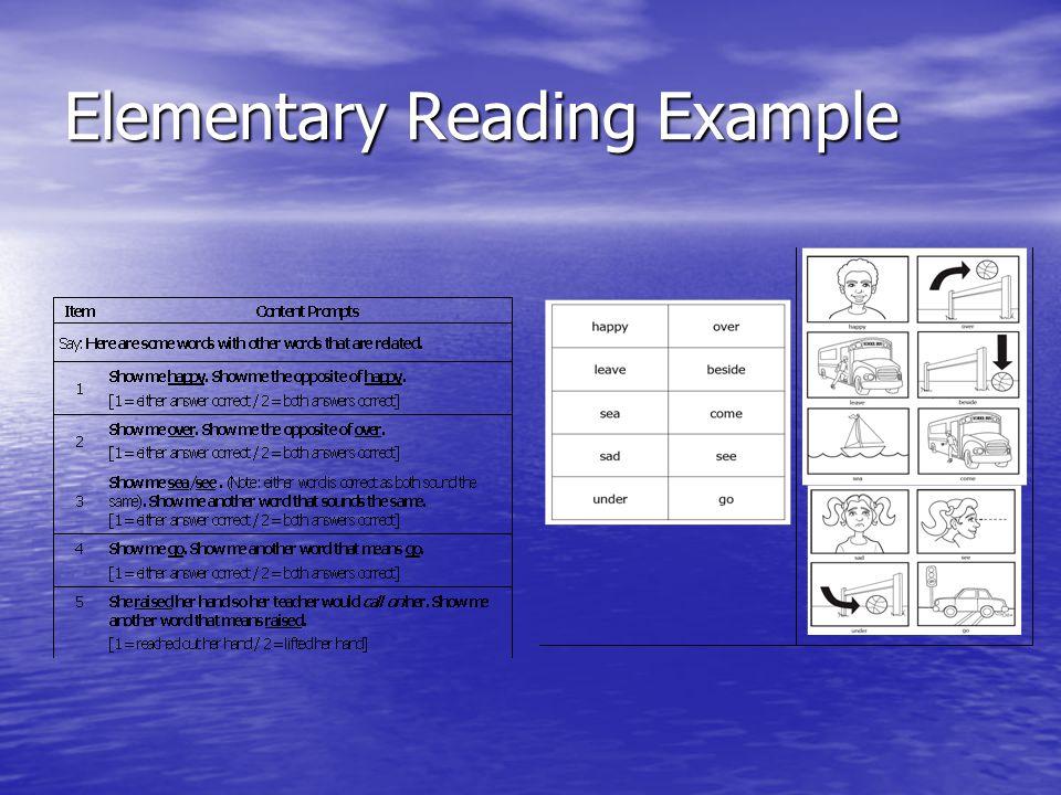 Elementary Reading Example