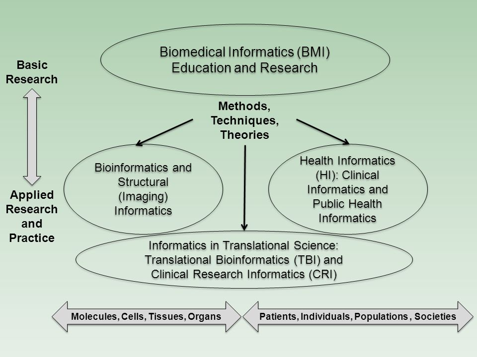 Bioinformatics and Structural (Imaging) Informatics Biomedical Informatics (BMI) Education and Research Basic Research Applied Research and Practice Molecules, Cells, Tissues, Organs Methods, Techniques, Theories Informatics in Translational Science: Translational Bioinformatics (TBI) and Clinical Research Informatics (CRI) Informatics in Translational Science: Translational Bioinformatics (TBI) and Clinical Research Informatics (CRI) Health Informatics (HI): Clinical Informatics and Public Health Informatics Patients, Individuals, Populations, Societies