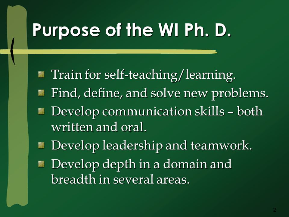 2 Purpose of the WI Ph.D. Train for self-teaching/learning.