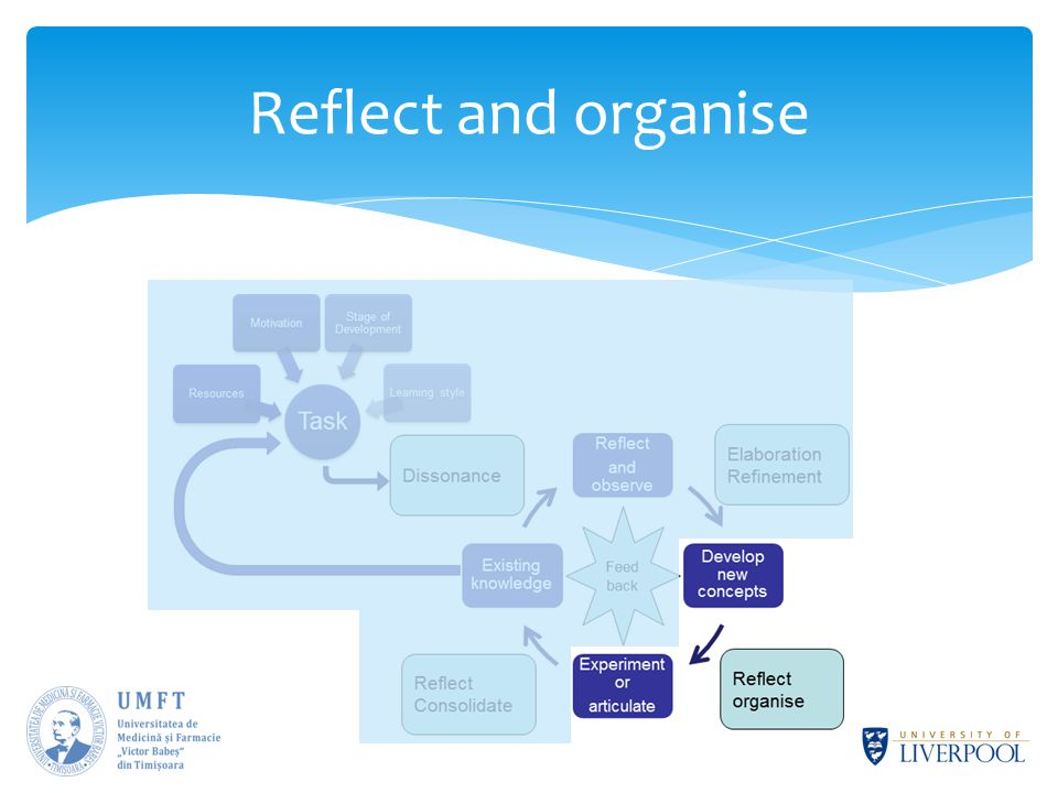 Reflect and organise