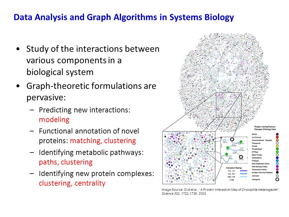 Study of the interactions between various components in a biological system Graph-theoretic formulations are pervasive: –Predicting new interactions: