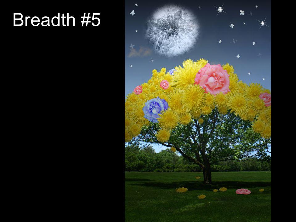 Breadth #5