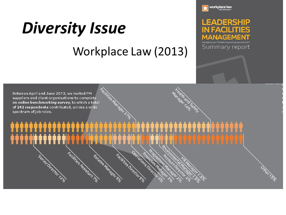 Diversity Issue Workplace Law (2013)