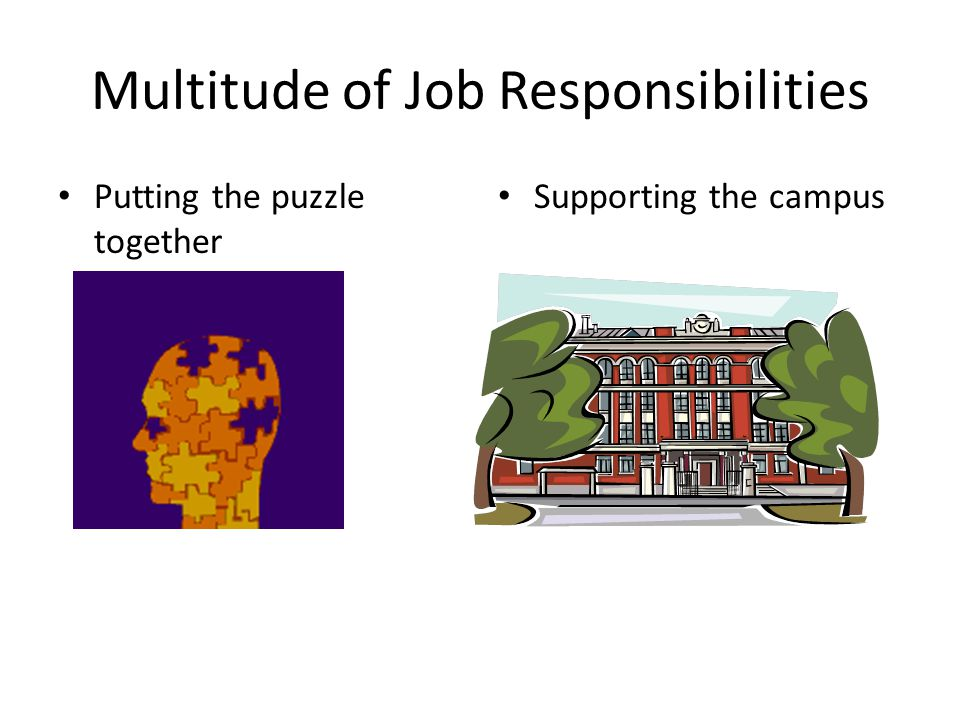 Multitude of Job Responsibilities Putting the puzzle together Supporting the campus