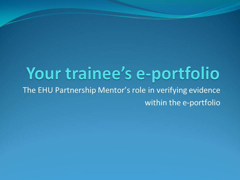The EHU Partnership Mentor's role in verifying evidence within the e-portfolio