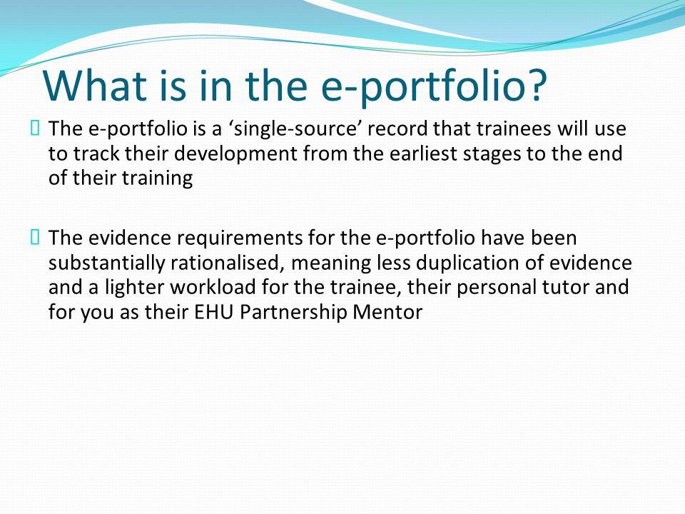 What is in the e-portfolio.