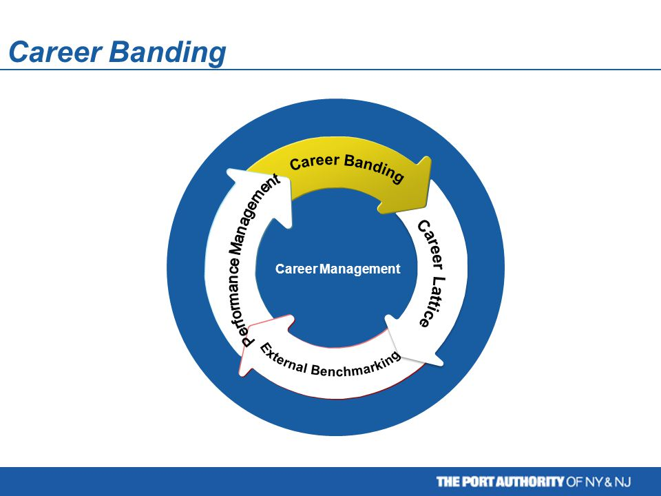 Career Management Career Banding